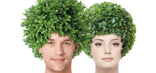 Трансплантація волосся: два сучасні методи